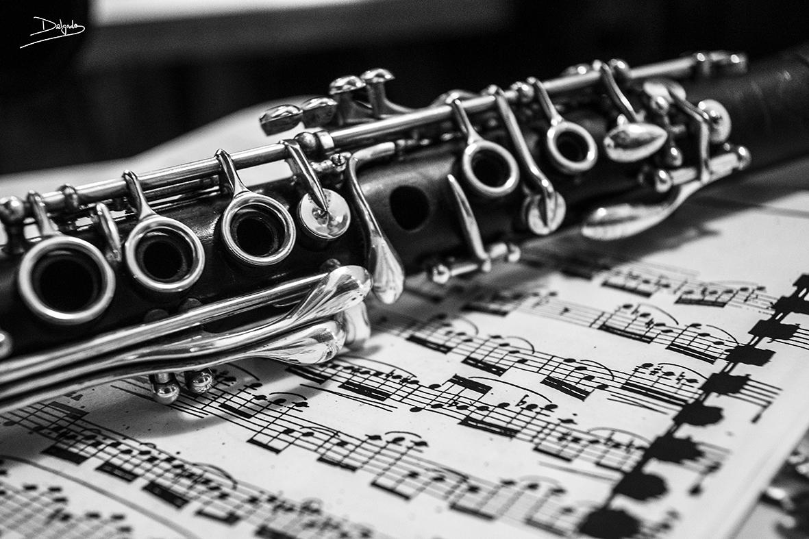 Foto del Día: Qué sería la vida sin música