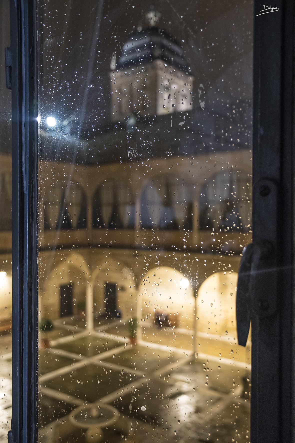 Foto del día: Belleza a través de las gotas de lluvia