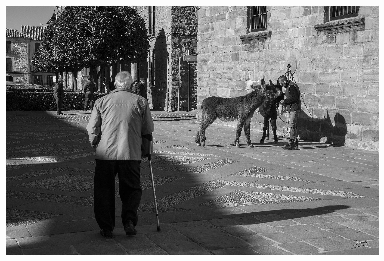 Foto del día: Un paseo por el casco antiguo.