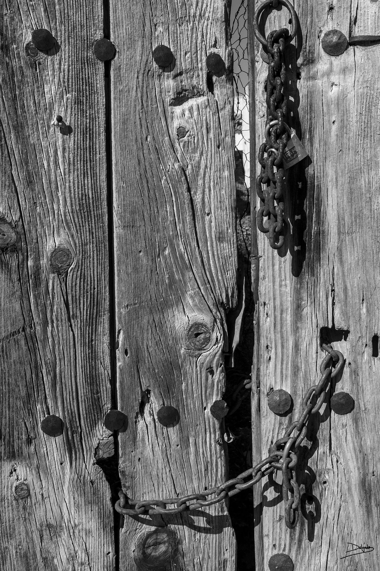 Foto del día: Hierro y madera