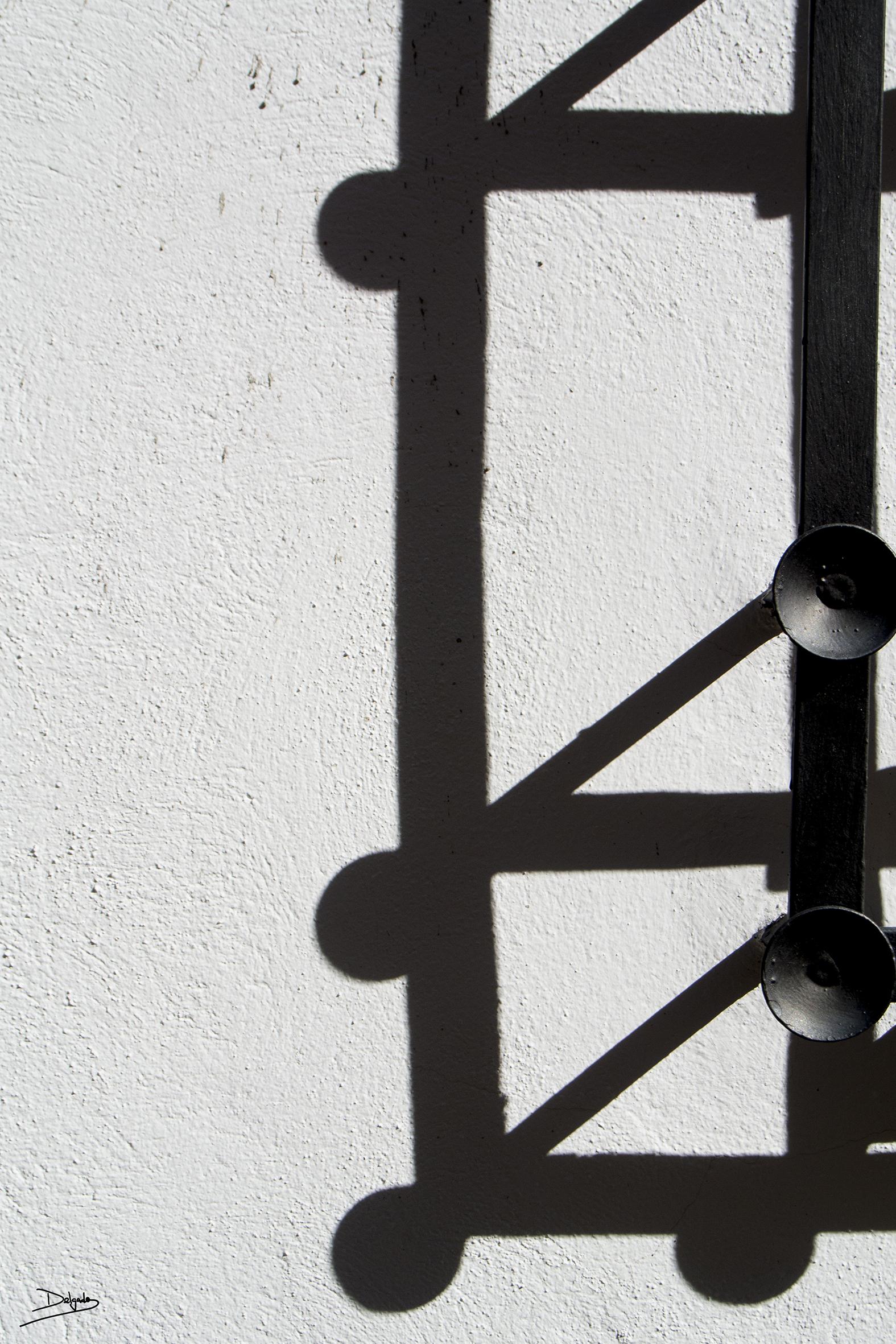 Fotos del día: Sombras