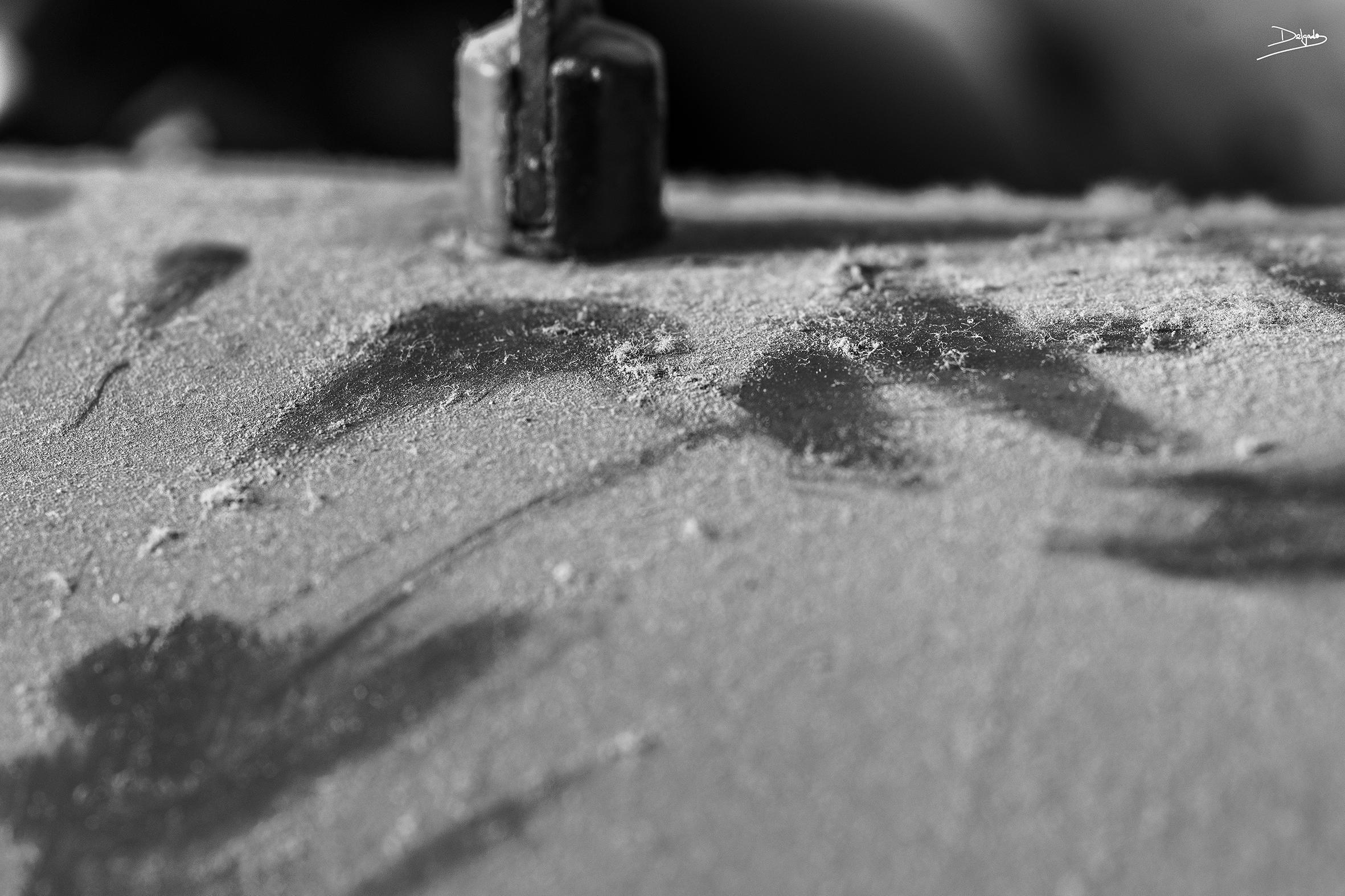 Foto del día: Texturas.