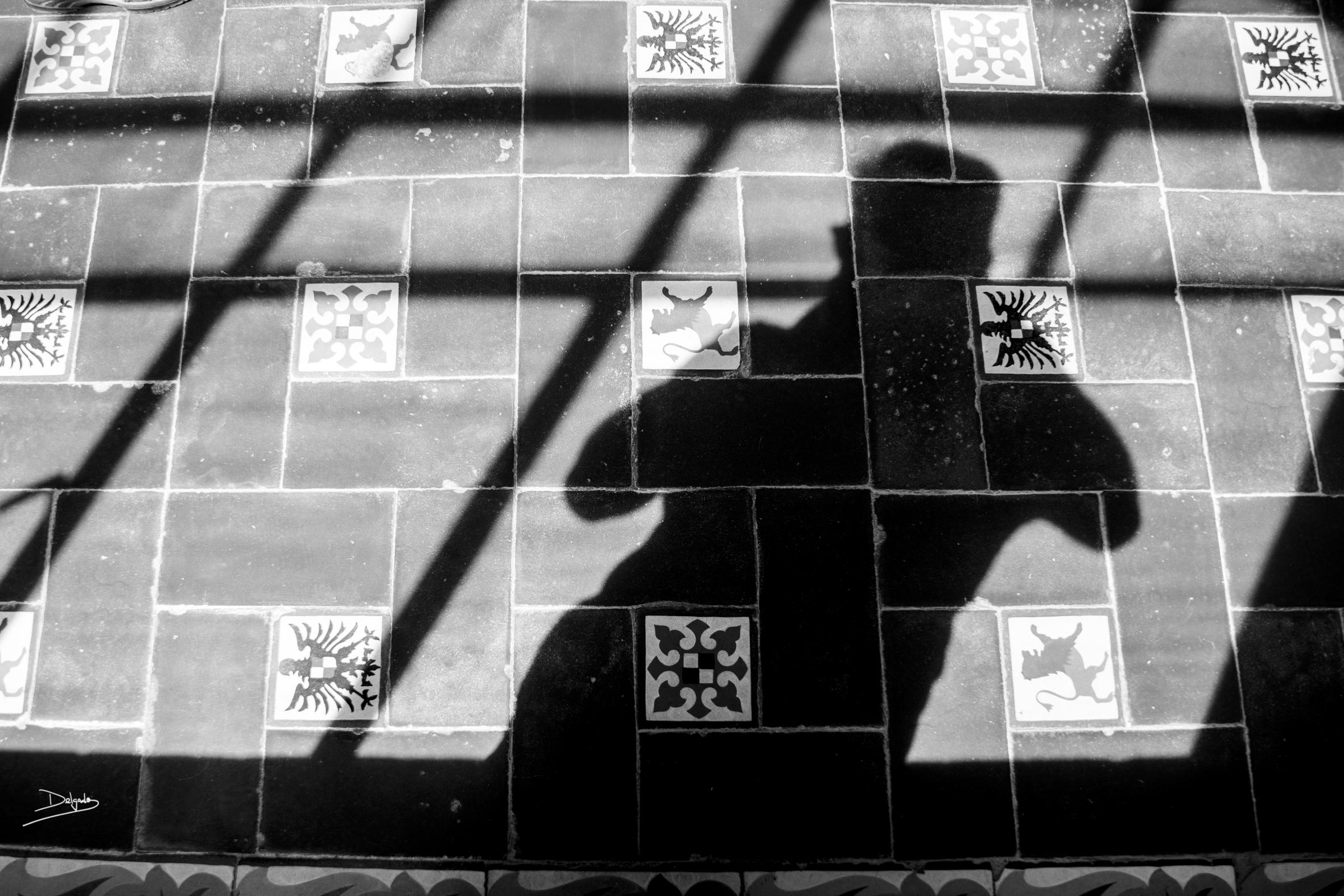 Foto del día: ¿quién es capaz de reconocerse en su propia sombra?