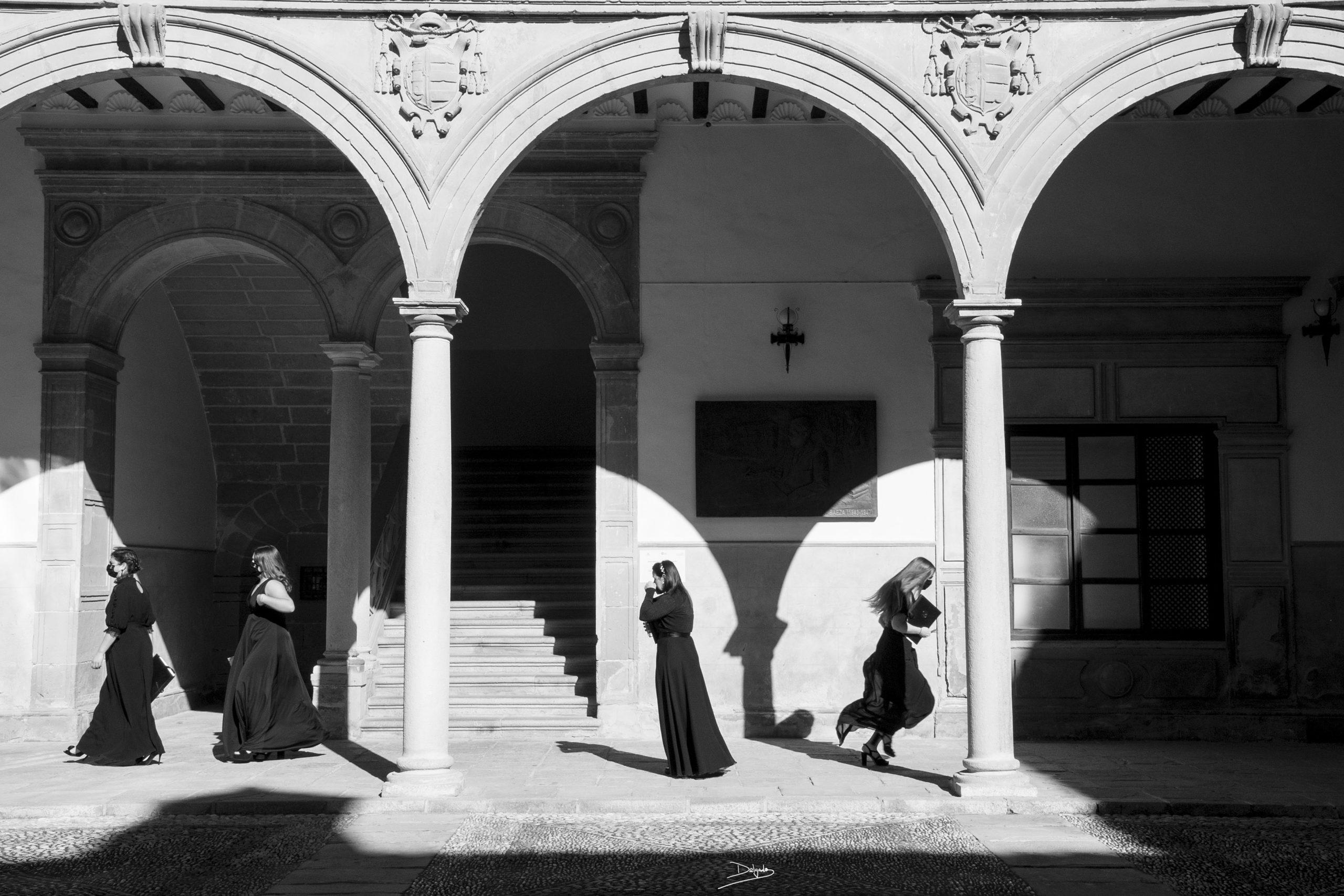 Foto del día: Al galope entre sol y sombra
