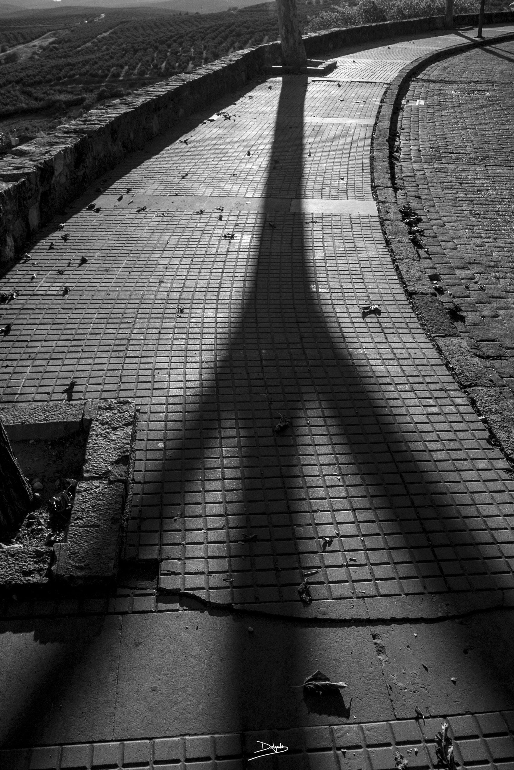 Foto del día: Todos los caminos llevan al mismo