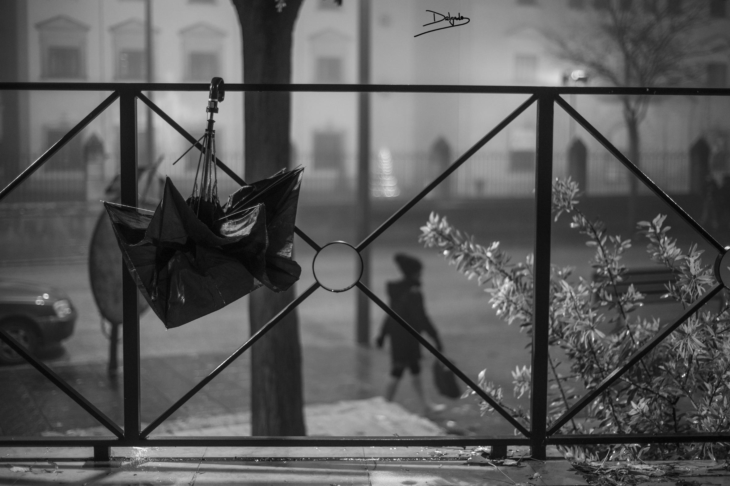 Foto del día: Olvido y necesidad