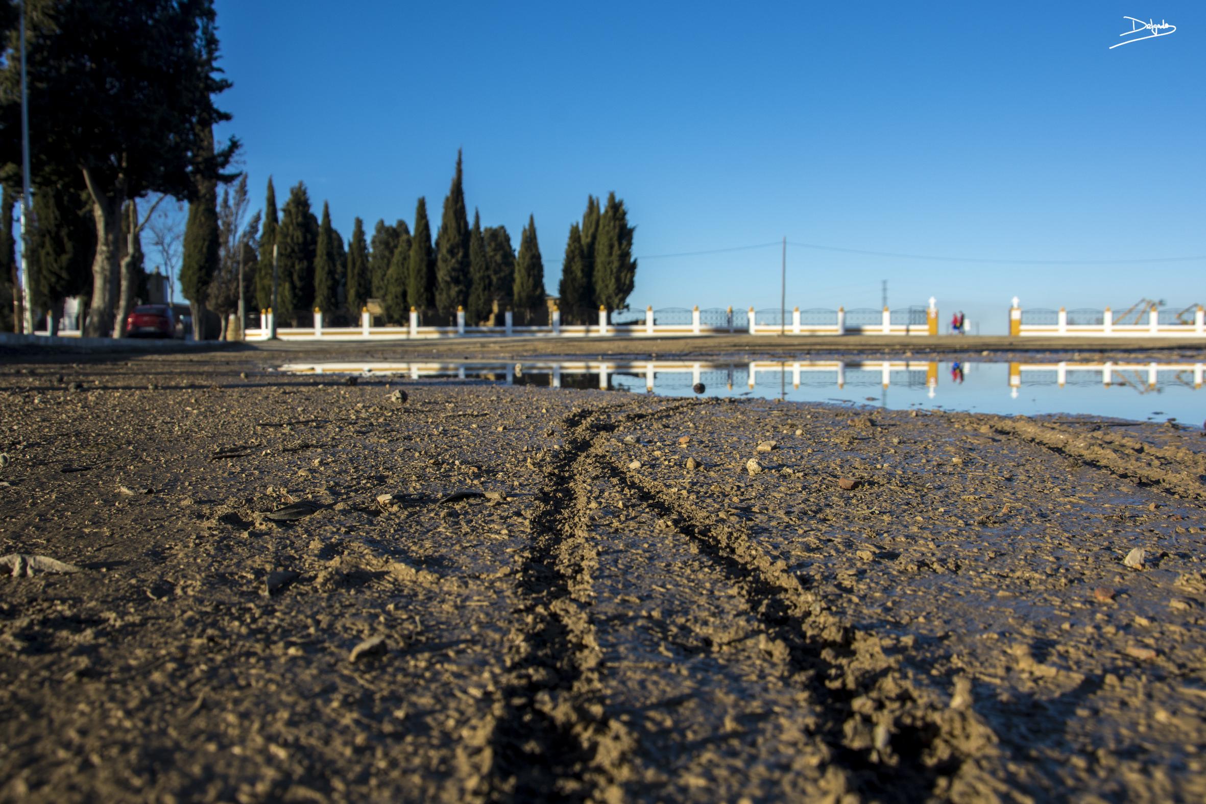 Foto del día: La huella que muestra el camino