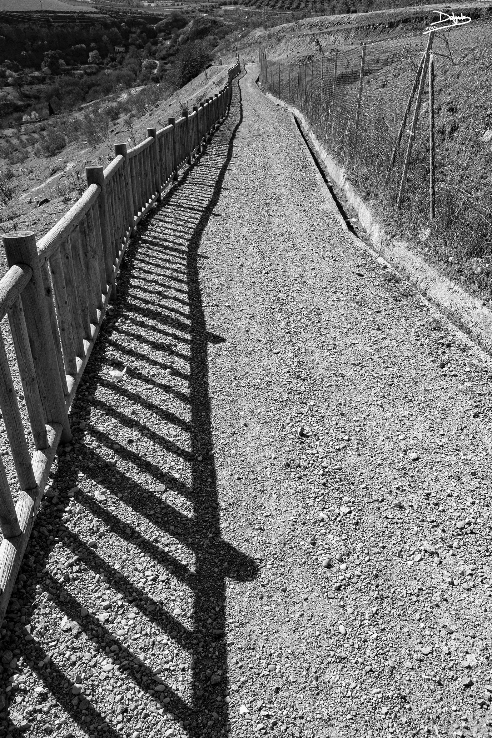 Foto del día: Donde se juntan los caminos