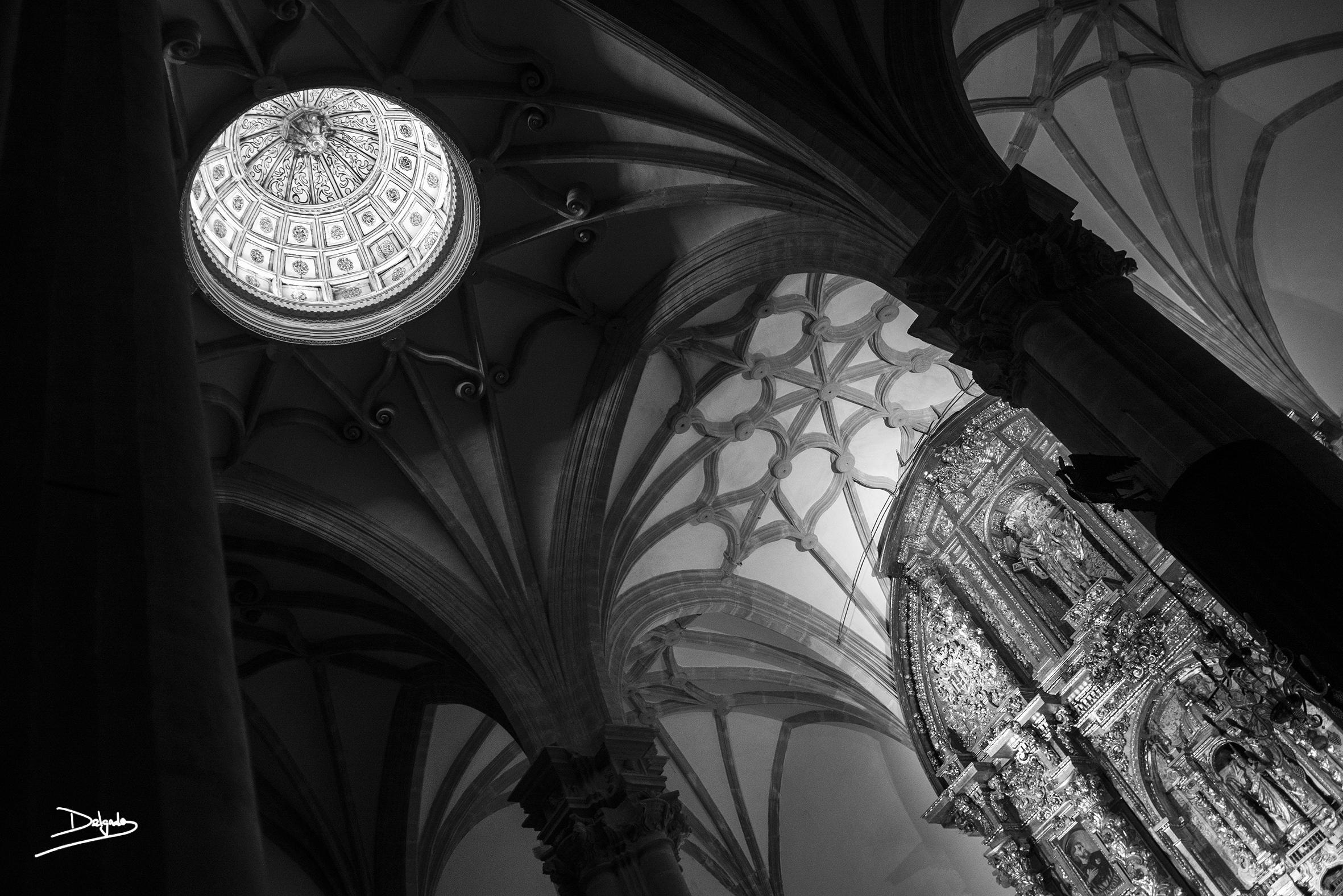 Foto del día: Renacimiento en blanco y negro