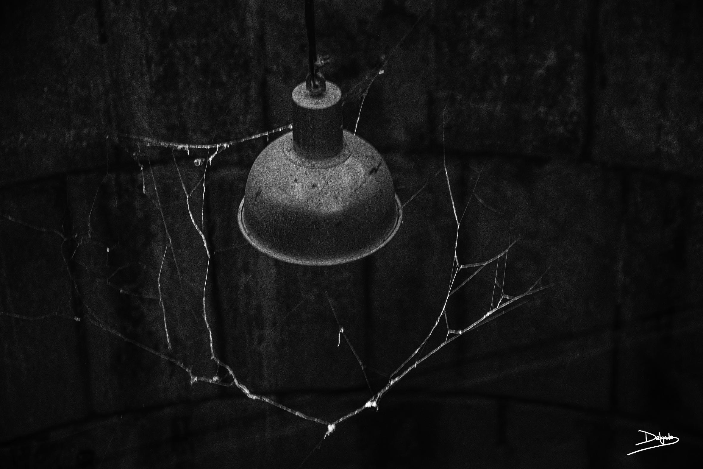Foto del día: En el abismo también hay luz