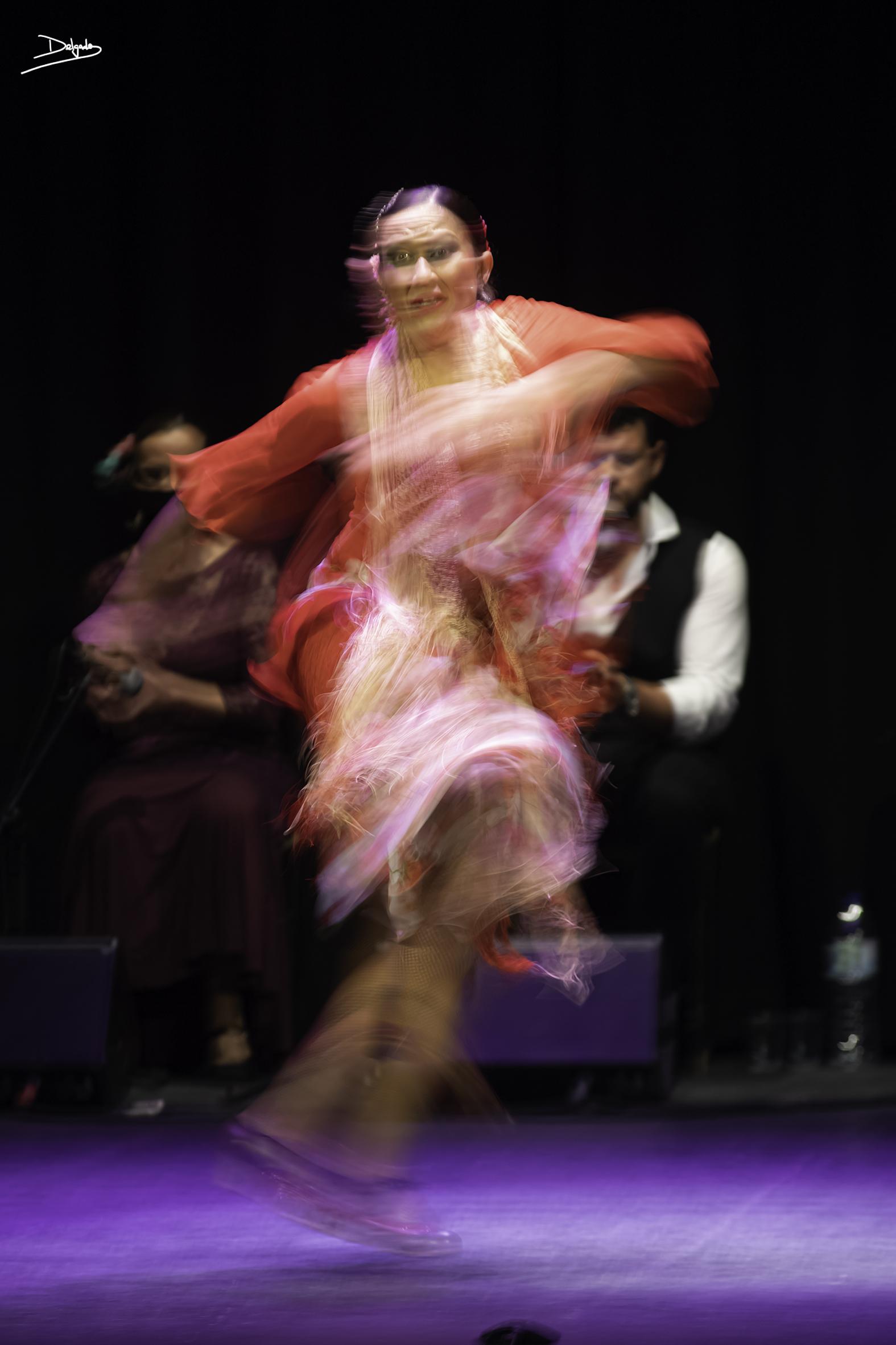 Foto del día: La Escuela Municipal de Danza en Flamencos y Mestizos